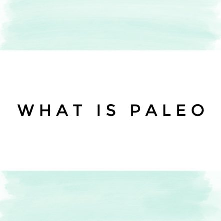 What is Paleo? A Brief Introduction