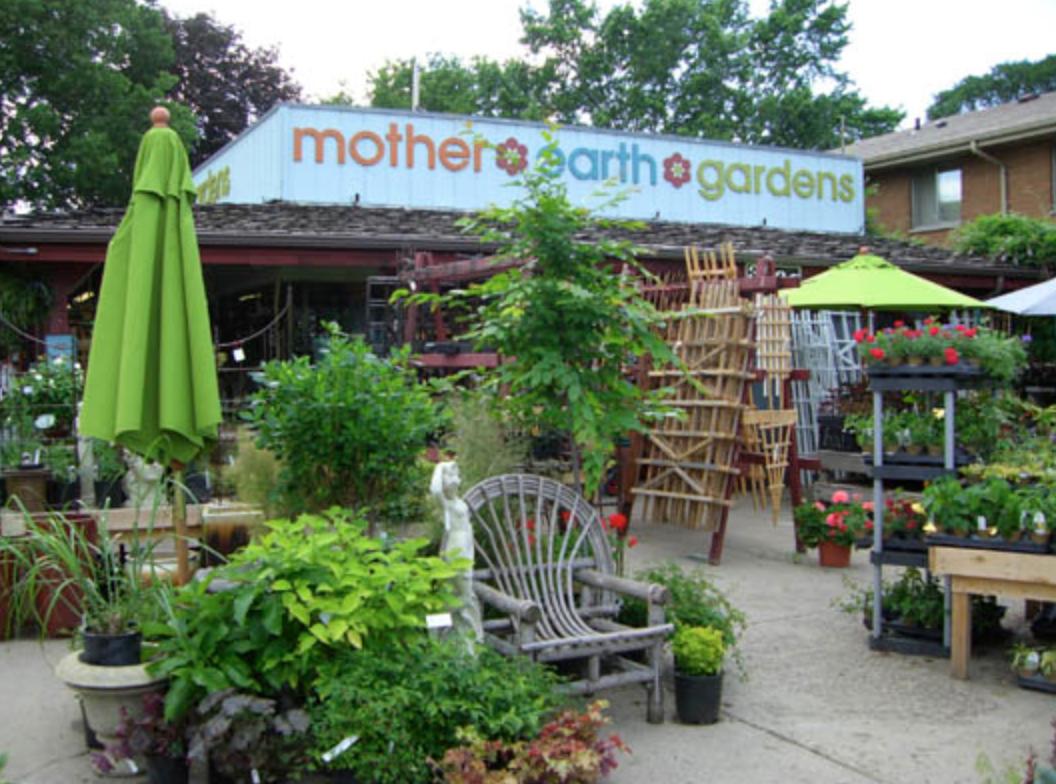 Minnesota small businesses